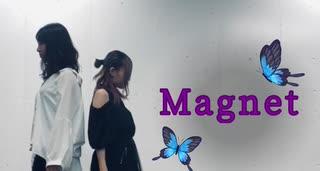 【しろくま×ぼんぼり】magnet【踊ってみた】