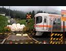 【のら】2020年7月17日 飛騨萩原~飛騨小坂 復旧確認列車運転