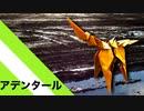 """【折り紙】「アデンタール」 15枚【タール】/【origami】 """"Adental"""" 15 pieces【tar】"""