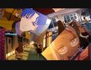 Fate/EXTRAリメイク発表にただただ喜ぶだけの動画
