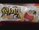 【食べる動画】ガリガリ君 梨《赤城乳業》【咀嚼音】