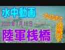 水中動画(2020年7月16日)in 陸軍桟橋Part2