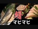 【握ってみた】寿司職人によるシイラ(マヒマヒ)のお寿司とお刺身の作り方