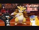 【ポケモン剣盾】とある王者の奮闘日記 9日目【サンドパン統一】