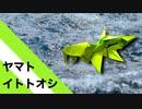 """【折り紙】「ヤマトイトトオシ」 6枚【魚】/【origami】 """"Yamato Itotooshi"""" 6 pieces【fish】"""