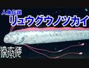 【人魚伝説】リュウグウノツカイ 鎌倉時代の目撃情報に迫る【深世海】part6