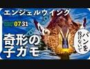 0731【カルガモ親子の悲劇】パン食で羽が奇形に。黄色い亀。マルガモ親子。ヒヨドリ水浴び、子セキレイ鳴き声【今日撮り野鳥動画まとめ】身近な生き物語