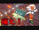 【実況】ポケモン剣盾でたわむれる エースバーンが唯一恐れた玉