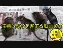 【視聴注意】ヒャッハー ネズミだーネズミ狩りだ~【自己新記録】