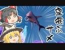 3DSでも見れるよ❤【フォートナイト】飛ばねえサメはただのサメだ #153【ゆっくり実況】【フォートナイトモバイルパッド】