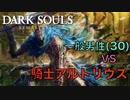 【Dark Souls】『騎士アルトリウス』 vs  完全初見プレイ一般男性(30)。PART.14。【ダークソウル】