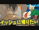 【実況】ポケモン剣盾 ガラル地方怖くね?準伝説「テラキオン」の意地