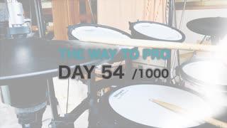 『プロドラマーへの道』54目/1000日