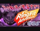 【実況】ゲームするだけでフィットネス!?#35【リングフィッ...