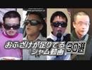 【総集編】おふざけが足りてるシャム動画30選【決定版】