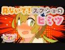 『PSO2』「アニメぷそ煮コミおかわり」第20話 見ないで!スクショのヒミツ