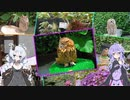 【VOICEROID車載】Versysで雑多なツーリング.Part19「掛川花鳥園へ」