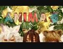 【サバナクロー】ANIMAるラップアレンジ踊ってみた【オリジナル振付】