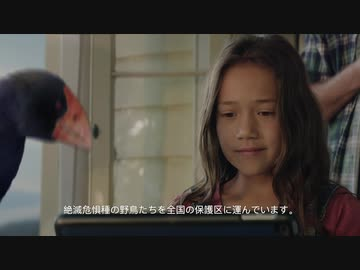 『【機内安全ビデオ】ニュージーランド航空~飛べないタカヘの大冒険編~【2020年2月~】』のサムネイル