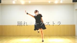 【りんご缶】踊れオーケストラ【踊ってみ