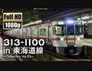 【JR東海】313系1100番台 in 東海道線 〜Collection Vol.03〜