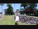 【まーみん】ハロ/ハワユ 【踊ってみた】
