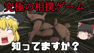 何してもOKな究極の相撲#02【PAUNCH】【