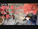 【芝刈り機で】ロータリーモア(RCD-5301AL)ってどうなん?【雑草を刈る】