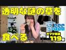 ミンゴスが透明な野菜(クロマキーによるもの)を食べながらトーク【第119回オマケ放送】