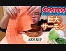 【ASMR】【咀嚼音】小ぶりのサーモンですいません…