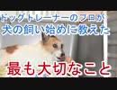 プロドッグトレーナーが犬を飼い始めた時に教えた最も大切なこととは?