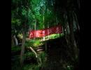 【険道探索】神奈川県道・山梨県道729号山北山中湖線 その2 【切通峠】