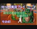 ドラゴンクエスト9 ゆっくり実況プレイ その41 【絶望と悪夢を司る幻術使い】