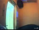【四畳半神話大系OP】迷子犬と雨のビート/ASIAN KUNG-FU GENERATION【歌ってみた】