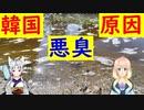 【韓国の反応】韓国の河川に糞尿を100t放流した結果・・・【世界の〇〇にゅーす】