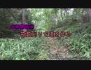 【山林開拓記③】 笹薮刈りで道を作る 【マキタMUR368LDG2】