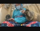 【野田草履P】ネコ祭りへ行く□緊急事態!【その1】【ニコ生】