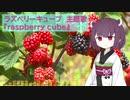 【AIきりたん】raspberry cube【ラズベリーキューブ】【NEUTRINO】