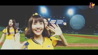 台湾野球の応援チアガール