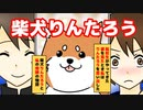 【柴犬りんたろう】転校生林太郎と昔飼っていた柴犬りんたろう…ちょっと不思議なお話、もしかして転生?ちょっと不思議な感動ファンタジー漫画【マンガ動画】