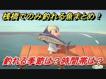 森 魚 あつ 桟橋