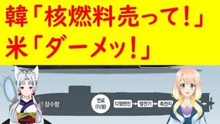 【韓国の反応】米国「韓国は技術力が無い