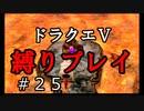 【アルカリ性】ようがんげんじんとのバトル!26周目の縛りプレイ!【ドラクエ5シーズン1 Part25】