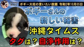 沖縄タイムスやらかす? ボギー大佐の言