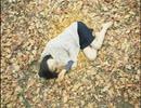 Bluem of Youth - ひとひらの夢