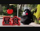 質素なくまモンの昼食!!メニューは熊本・八代産のトマト!!