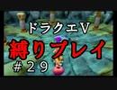 【アルカリ性】今回こそ水のリングを!26周目の縛りプレイ!【ドラクエ5シーズン1 Part29】