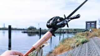 【釣り・Fishing】荒川の温排水でハクレンが釣れる@彩湖下流部でガー狙い、おまけ動画は新河岸川でブラックバス釣り&見次公園で鯉観察【VLOG・禍福は糾える縄の如し】