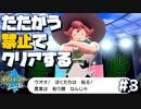 【ポケモン剣盾】たたかう禁止でクリアする!【第一部 終】