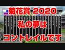【競馬に人生】菊花賞 2020 私の夢はコントレイルですです バビット ロバートソンキー ヴェルトライゼンデ ダノングロワール ブラックホール ターキッシュパレス【競馬予想 完全攻略】